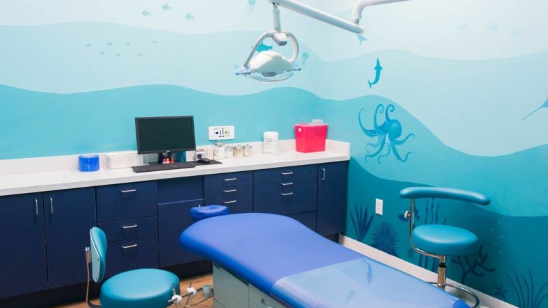 Pediatric Dentist Dallas TX Maternity and Newborn Photographer CLJ Photography